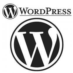 03-wordpress-hosting.jpg